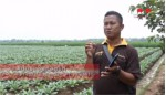 Digitalisasi Data Petani