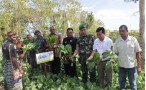 Bina Tani Sejahtera Foundation Holds Technology Vegetable Expo