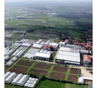 PT EAST WEST SEED INDONESIA